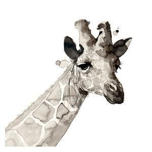 Giraffe by Philippe Debongnie