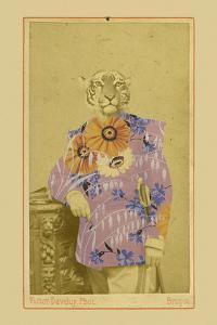 Gustave by Philippe Debongnie