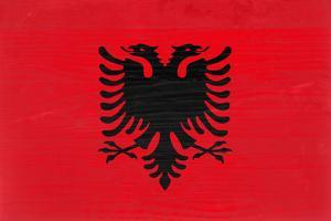 Albania Flag Design with Wood Patterning - Flags of the World Series by Philippe Hugonnard