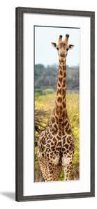 Awesome South Africa Collection Panoramic - Giraffe Portrait III by Philippe Hugonnard