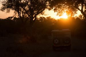 Awesome South Africa Collection - Sunrise Safari by Philippe Hugonnard