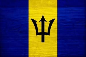 Barbados Flag Design with Wood Patterning - Flags of the World Series by Philippe Hugonnard