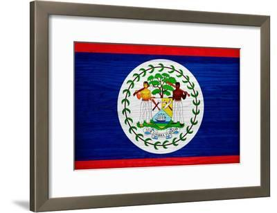 Belize Flag Design with Wood Patterning - Flags of the World Series
