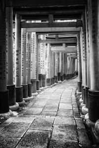 Black Japan Collection - Between Torii by Philippe Hugonnard