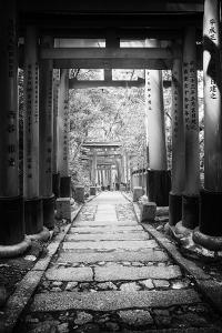 Black Japan Collection - Follow the path by Philippe Hugonnard