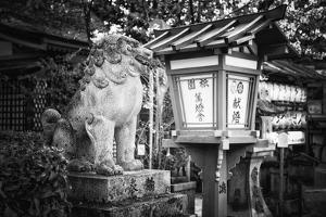 Black Japan Collection - Guardian of the Temple by Philippe Hugonnard