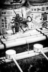 Black Japan Collection - Japanese Temple Fountain by Philippe Hugonnard