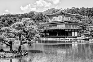 Black Japan Collection - Kinkaku-Ji Temple Kyoto by Philippe Hugonnard
