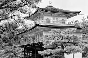 Black Japan Collection - Kinkaku-Ji Temple by Philippe Hugonnard