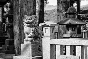 Black Japan Collection - Komainu Temple by Philippe Hugonnard