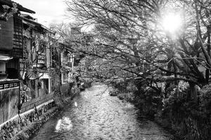 Black Japan Collection - Kyoto River by Philippe Hugonnard