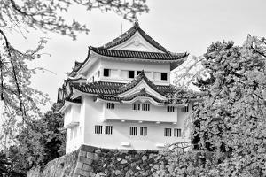 Black Japan Collection - Nagoya White Castle by Philippe Hugonnard