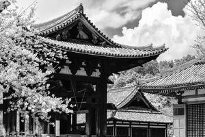 Black Japan Collection - Nara Temple by Philippe Hugonnard