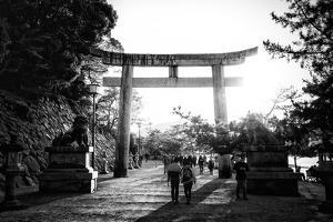 Black Japan Collection - Sunset of Torii Gate by Philippe Hugonnard