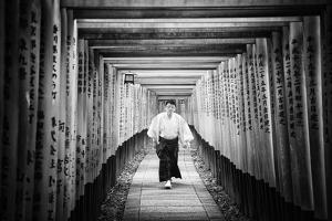 Black Japan Collection - Torii Gates by Philippe Hugonnard