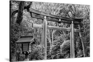 Black Japan Collection - Wooden Torii by Philippe Hugonnard