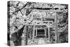 Black Japan Collection - Yoshida Shrine Torii by Philippe Hugonnard
