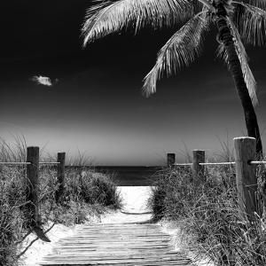 Boardwalk on the Beach - Florida by Philippe Hugonnard