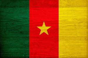 Cameroon Flag Design with Wood Patterning - Flags of the World Series by Philippe Hugonnard