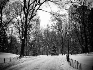 Central Park Snow by Philippe Hugonnard