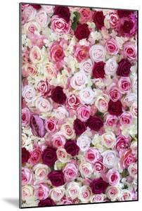 China 10MKm2 Collection - 1001 Roses by Philippe Hugonnard