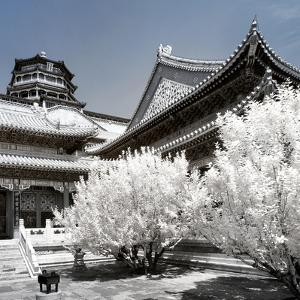 China 10MKm2 Collection - Another Look - Summer Palace by Philippe Hugonnard