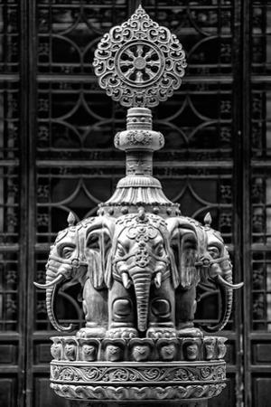 China 10MKm2 Collection - Buddhist Temple - Elephant Statue by Philippe Hugonnard