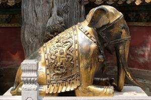 China 10MKm2 Collection - Elephant Buddha by Philippe Hugonnard