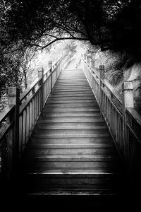 Stairs Black And White Photography Art Prints Paintings Posters Wall Art Art Com