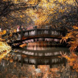 China 10MKm2 Collection - Romantic Bridge in Autumn by Philippe Hugonnard