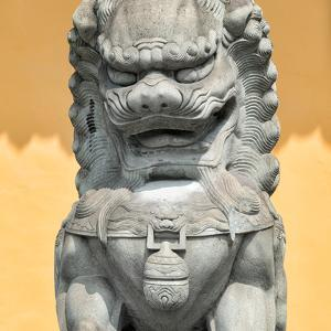 China 10MKm2 Collection - Stone Lion Statue by Philippe Hugonnard