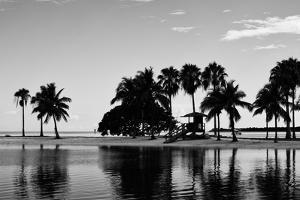 Coastal Beach Landscape - Miami - Florida by Philippe Hugonnard