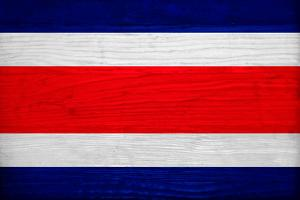 Costa Rica Flag Design with Wood Patterning - Flags of the World Series by Philippe Hugonnard