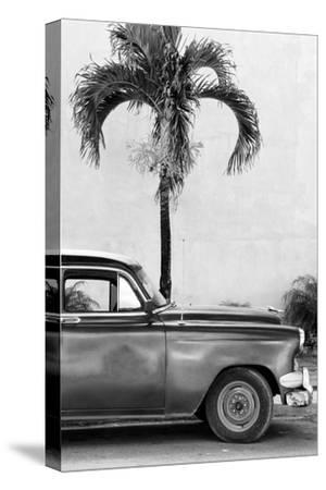 Cuba Fuerte Collection B&W - American Classic Car IV