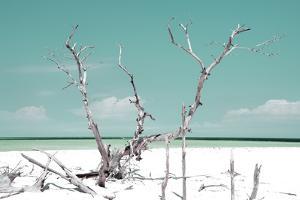 Cuba Fuerte Collection - Beautiful Wild Beach III by Philippe Hugonnard