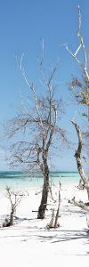Cuba Fuerte Collection Panoramic - Blue Summer by Philippe Hugonnard