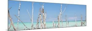 Cuba Fuerte Collection Panoramic - Ocean Wild Nature by Philippe Hugonnard