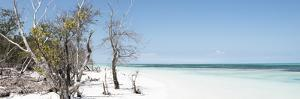Cuba Fuerte Collection Panoramic - Sandy Beach Pastel Blue by Philippe Hugonnard