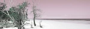 Cuba Fuerte Collection Panoramic - Sandy Beach Pastel Pink by Philippe Hugonnard
