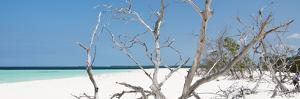 Cuba Fuerte Collection Panoramic - Tropical Beach Nature by Philippe Hugonnard