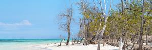 Cuba Fuerte Collection Panoramic - White Sand Beach by Philippe Hugonnard