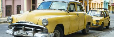 Cuba Fuerte Collection Panoramic - Yellow Classic Cars