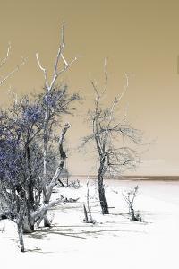 Cuba Fuerte Collection - Sandy Beach Pastel Dark Yellow II by Philippe Hugonnard