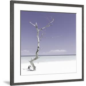 Cuba Fuerte Collection SQ - Alone on the White Sandy Beach - Pastel Purple by Philippe Hugonnard