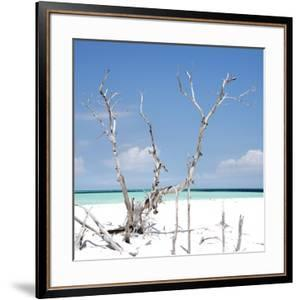 Cuba Fuerte Collection SQ - Blue Serenity by Philippe Hugonnard