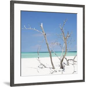Cuba Fuerte Collection SQ - Blue Stillness by Philippe Hugonnard