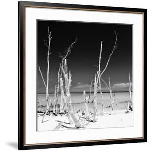 Cuba Fuerte Collection SQ BW - Ocean Wild Nature by Philippe Hugonnard