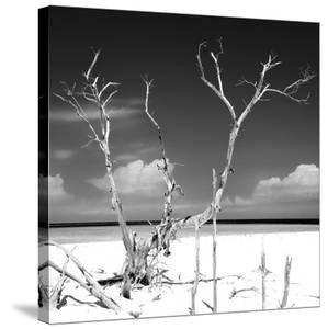 Cuba Fuerte Collection SQ BW - Serenity by Philippe Hugonnard