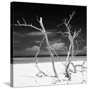 Cuba Fuerte Collection SQ BW - Stillness by Philippe Hugonnard