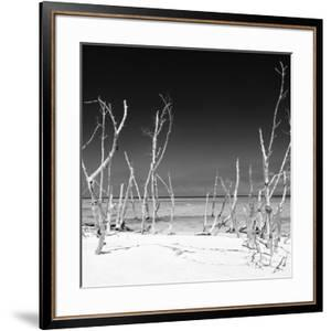 Cuba Fuerte Collection SQ BW - Wild Beach by Philippe Hugonnard